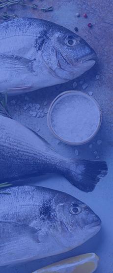 Pescado cocina